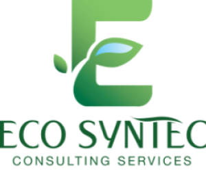 ECO SYNTEC Consulting Services